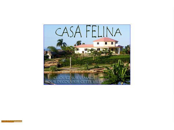 Casa Felina